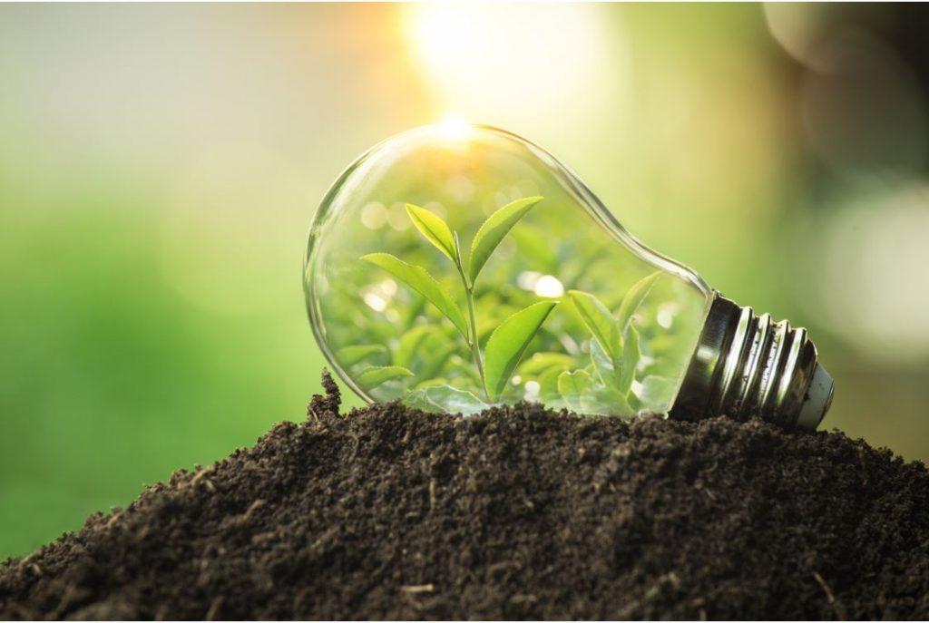 Sustenabilitate 3