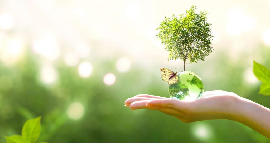 Sustenabilitate 2